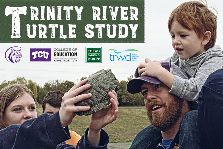 Turtle Study | TRWD