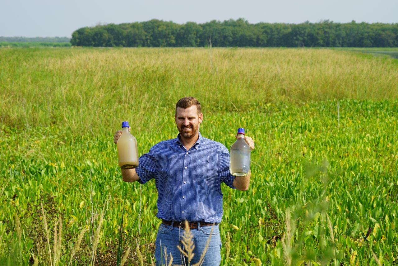 Wetlands transform a murky mess into viable water supply