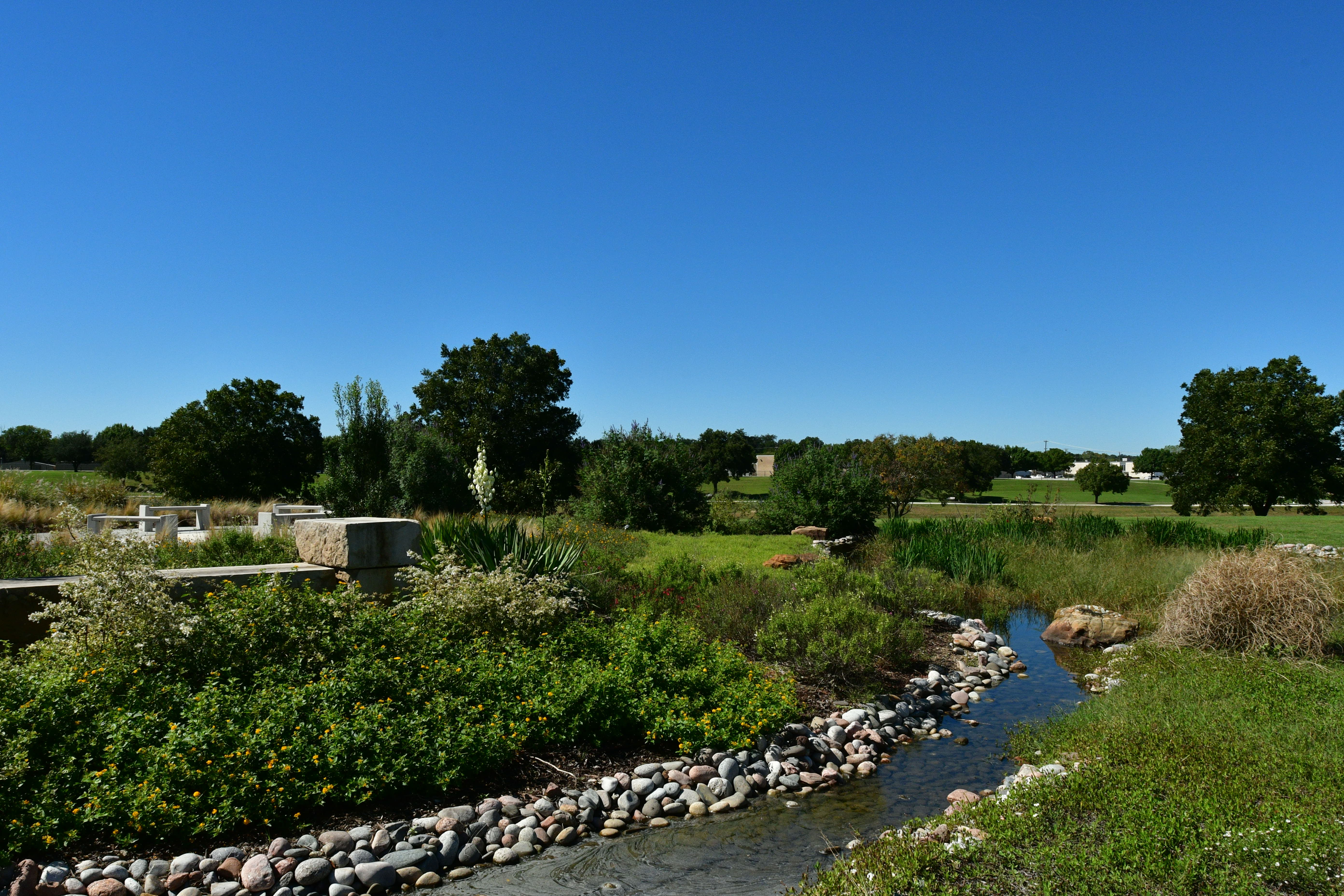 Gardening in North Texas   TRWD