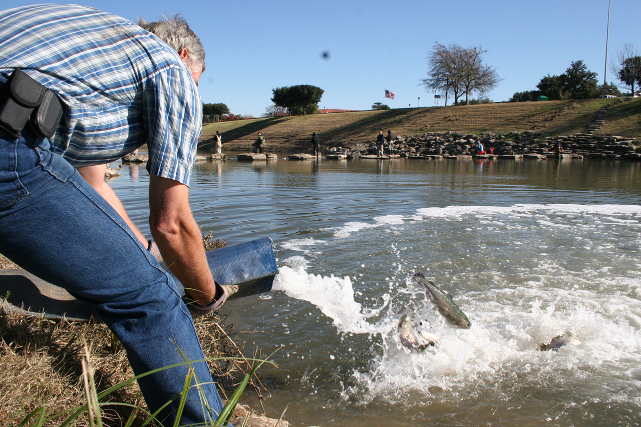 Trout Stocking soon in Fort Worth