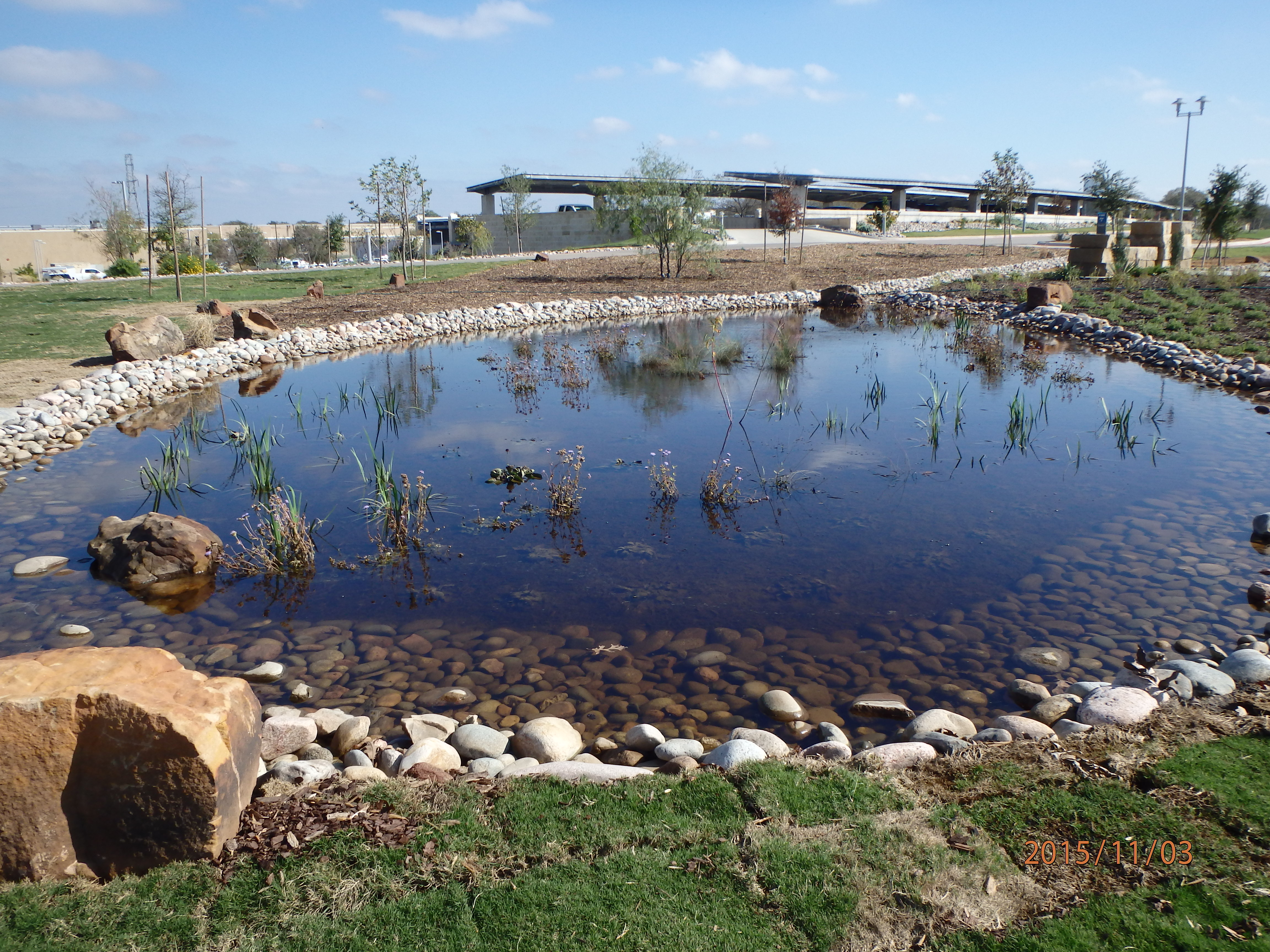 Better landscaping; TRWD leads by example at its Fort Worth office